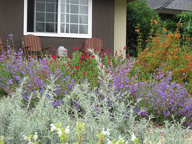 Tips to deter Burglars - Keep your home's landscaping neat and trimmed